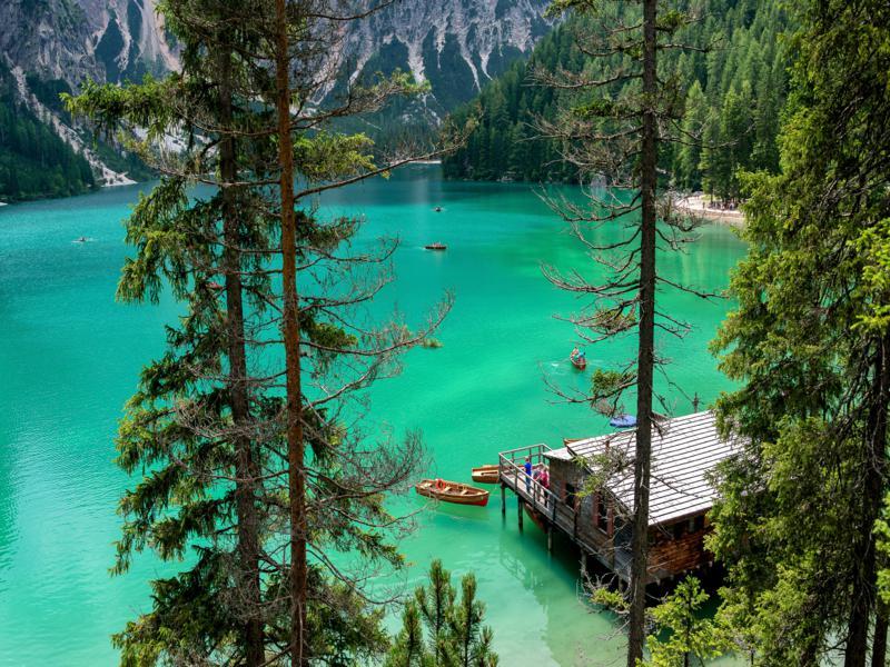 lago verde con alberi e montagne intorno