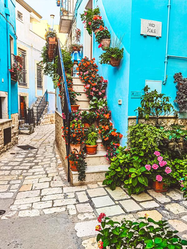 scale esterne casa con piante e fiori