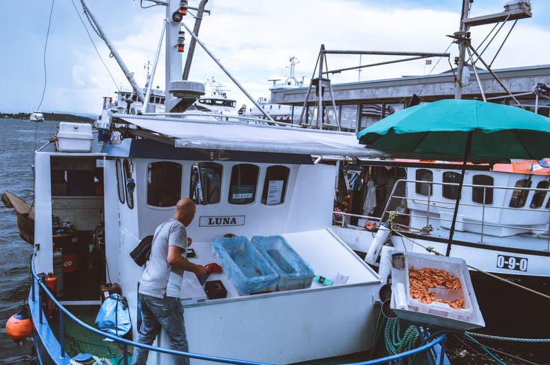aker brygge pescatori a oslo
