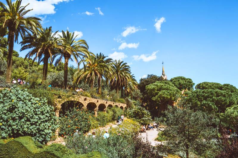 vista del giardino di park guell con fiori alberi e piante
